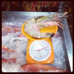 Big giant shrimp thingy