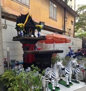 Zebras?? really?